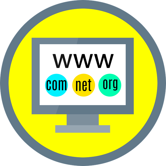 introduction to domain and hosting